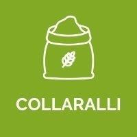 Azienda Collaralli